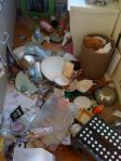 DIshes_after_Quake